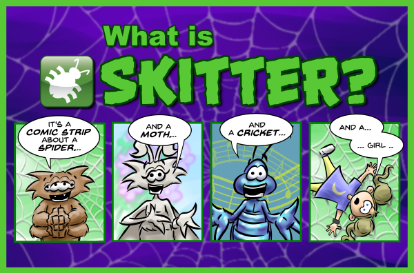 What Is Skitter