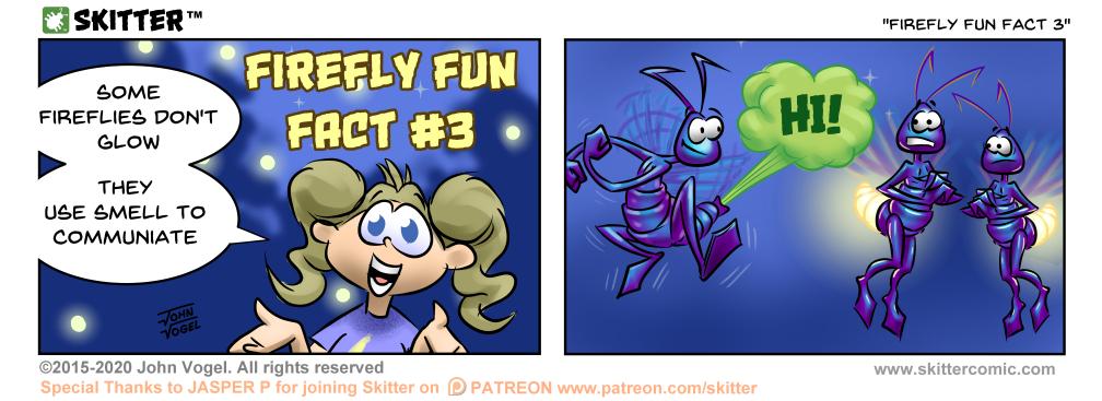 Firefly Fun Fact 3